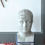 Tête de Phrénologie - Dr. Fowler